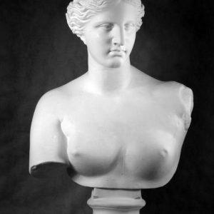 Бюст на заказ: «Венера Милосская»