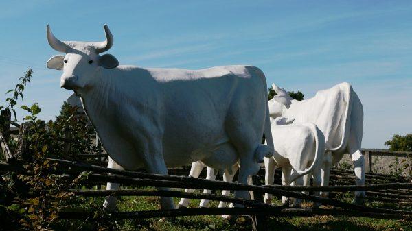 Скульптура коровы. Фигура из пенопласта и стеклопластика