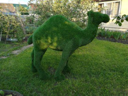 Скульптура из стеклопластика: Верблюд — топиари